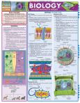 Biology Basic Principles Of Biology